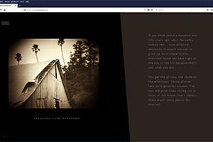 Chs 02 Brion Website 2017 Sleeping Lady Vineyard Web