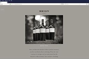 Chs 06 Brion Website 2017 Wine Web