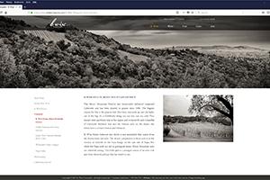Chs 09 B Wise Website 2017 Vineyard Web