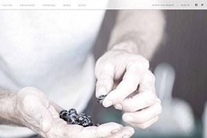 Vin65 Certified Designer Juice Media Booker Wines
