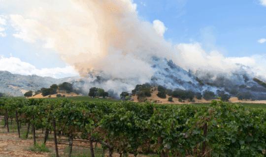 Northern California Vineyard Fires 540X320 1
